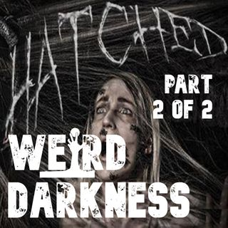 """HATCHED: INVISIBLE SPIDERS"" (Part 2 of 2) by Jason R. Davis #WeirdDarkness"