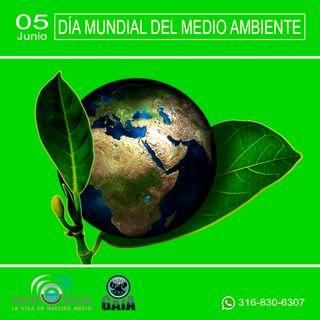 NUESTRO OXÍGENO 05 de junio Día mundial del medio ambiente - Angie de la Peña