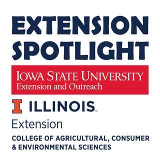 Extension Spotlight