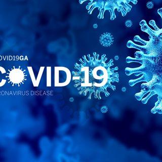 El Corona Virus COVID 19 (Spanish)