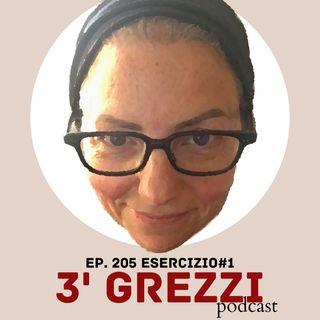 3' grezzi Ep. 205 Esercizio#1