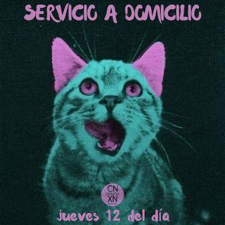 Servicio a domicilio 18