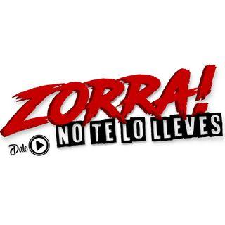 Mejores conciertos en 2019 - Zorra no te lo lleves