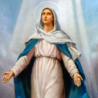 Rosary October 28