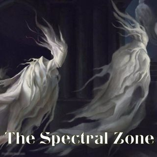 The Spectral Zone - Provocation in the Paranormal