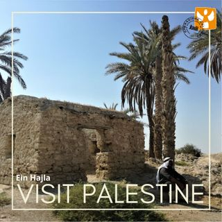 Visit Palestine: 09 Ein Hajla – Storie di resistenza