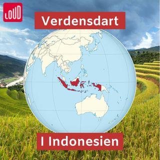 Verdensdart #4 I Indonesien