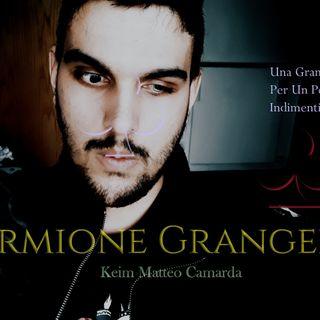 Nel Nome di Hermione - La Verità #Hermione #DarkVanities #Darkness #Libri #HarryPotter #Aurors
