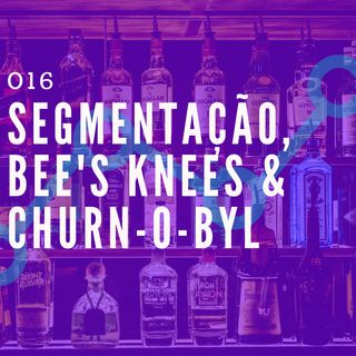 016 - Segmentação, Bee's Knees & Churn-O-byl
