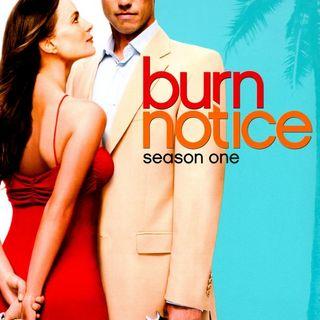 N.Y.N.E.R. Episode 7: Why should you watch Burn Notice?