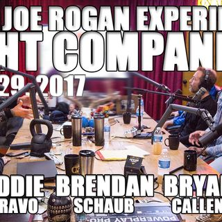 Fight Companion - January 29, 2017
