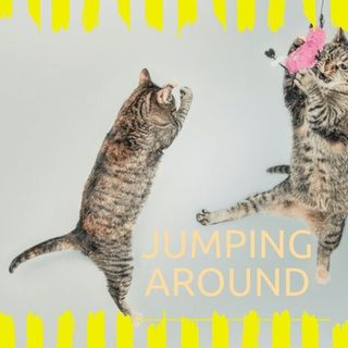 Jumping Around
