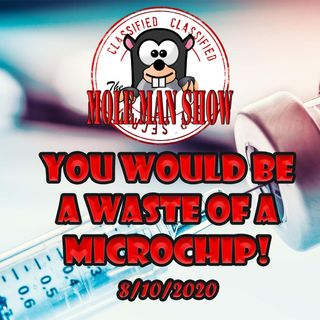 Monday 8/10-You Would Be a Waste of a Microchip