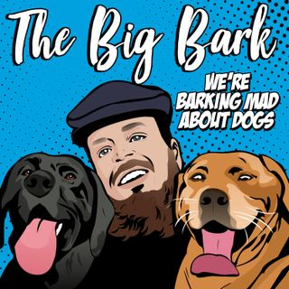 The Big Bark Episode 15 - Chats with the Cork Nose Robert the greyhound