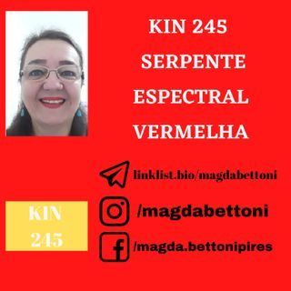 KIN 245 - SERPENTE ESPECTRAL VERMELHA - 19ª Onda Encantada do Tzolkin