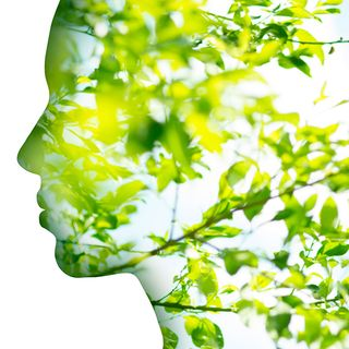 Naturopatia: cosa fa il naturopata?