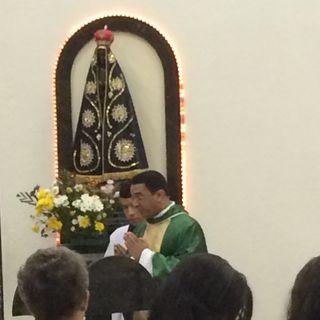 pregação do pe. Osvaldo Lopes - 27º Domingo do Tempo Comum - 04/10/2015