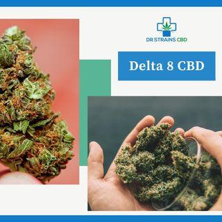 Delta 8 CBD | Dr. Strains CBD