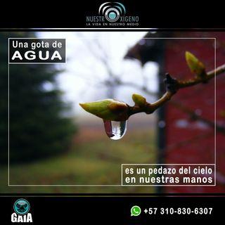 NUESTRO OXÍGENO 10 estaciones del agua - Hernando Díez