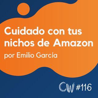 Esto es importante: nuevo update para nichos de Amazon (Actualidad SEO) #116