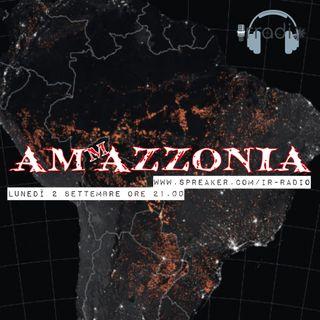AMmMAZZONIA -TUTTA LA VERITA'