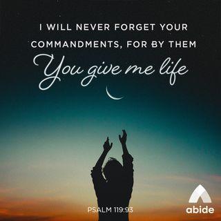 God's Precepts