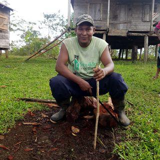 Indígenas miskitos de Nicaragua se quedan sin tierras