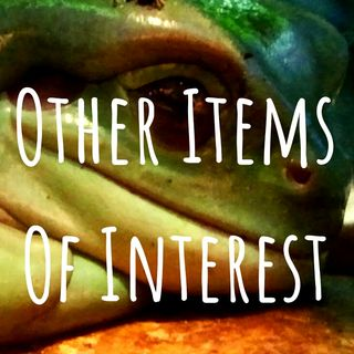 Other Items Of Interest episode 190513