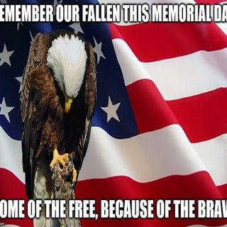 Mollman Media Inc. Memorial Day Tribute