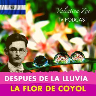 AL ENTREABRIRSE LA FLOR DE COYOL ALFREDO ESPINO🌸 | Despues de la Lluvia Alfredo Espino🌦️ | Poesía 🥰