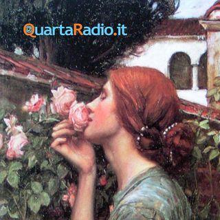 La rosa, una novella di Luigi Pirandello
