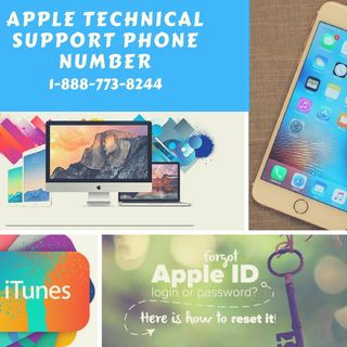 Apple Support Phone  Number 18887738244