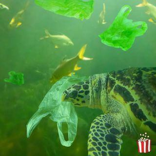 Clima e plastiche minacciano il mare italiano
