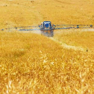 L'UNEP: all'agricoltura sostenibile serve una nuova politica sui fertilizzanti