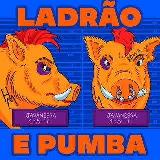 Ladrão e Pumba