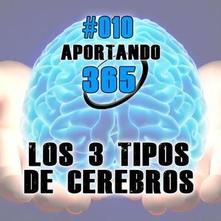 LOS 3 TIPOS DE CEREBROS - #010 - APORTANDO365