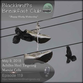 Achilles Heel Targeting Marxist Cells - Blackbird9 Podcast