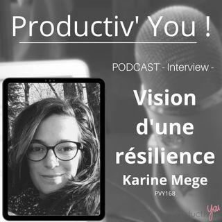 Une vision de la resilience