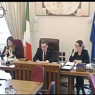 Brexit : Dalla commissioni esteri l'avvocato Cecilia Gozzoli e On Simone Billi per gli italiani all'estero sul Settled Status