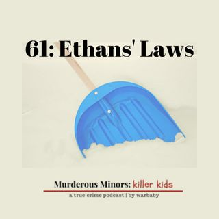 61: Ethans' Laws (Damian Hauschultz; Ethan Song)