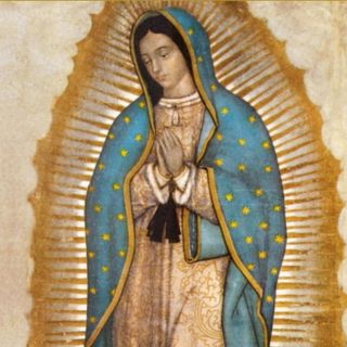 Gospel Reflection: Our Lady of Guadalupe