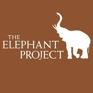Big Blend Radio: Adam M. Roberts - The Elephant Project