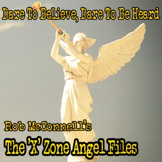 The 'X' Zone Angel Files