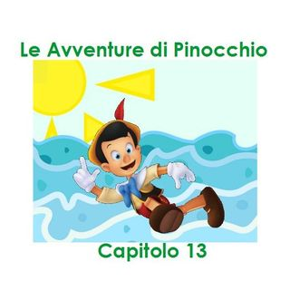 Le Avventure di Pinocchio - Capitolo 13