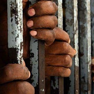 I gelsomini del Maghreb - Tortura di Stato