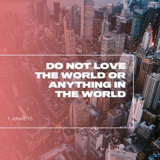 Bible Study Exercise: Love Not