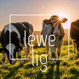 20 Maart 2020 Agt-koei mense!!