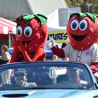 Rhett Rollyson - Florida Strawberry Festival