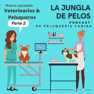 Veterinarios & Peluqueros caninos 2