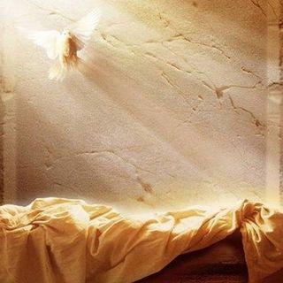 #DomenicaDiRisurrezione con Padre Vincenzo Battaglia